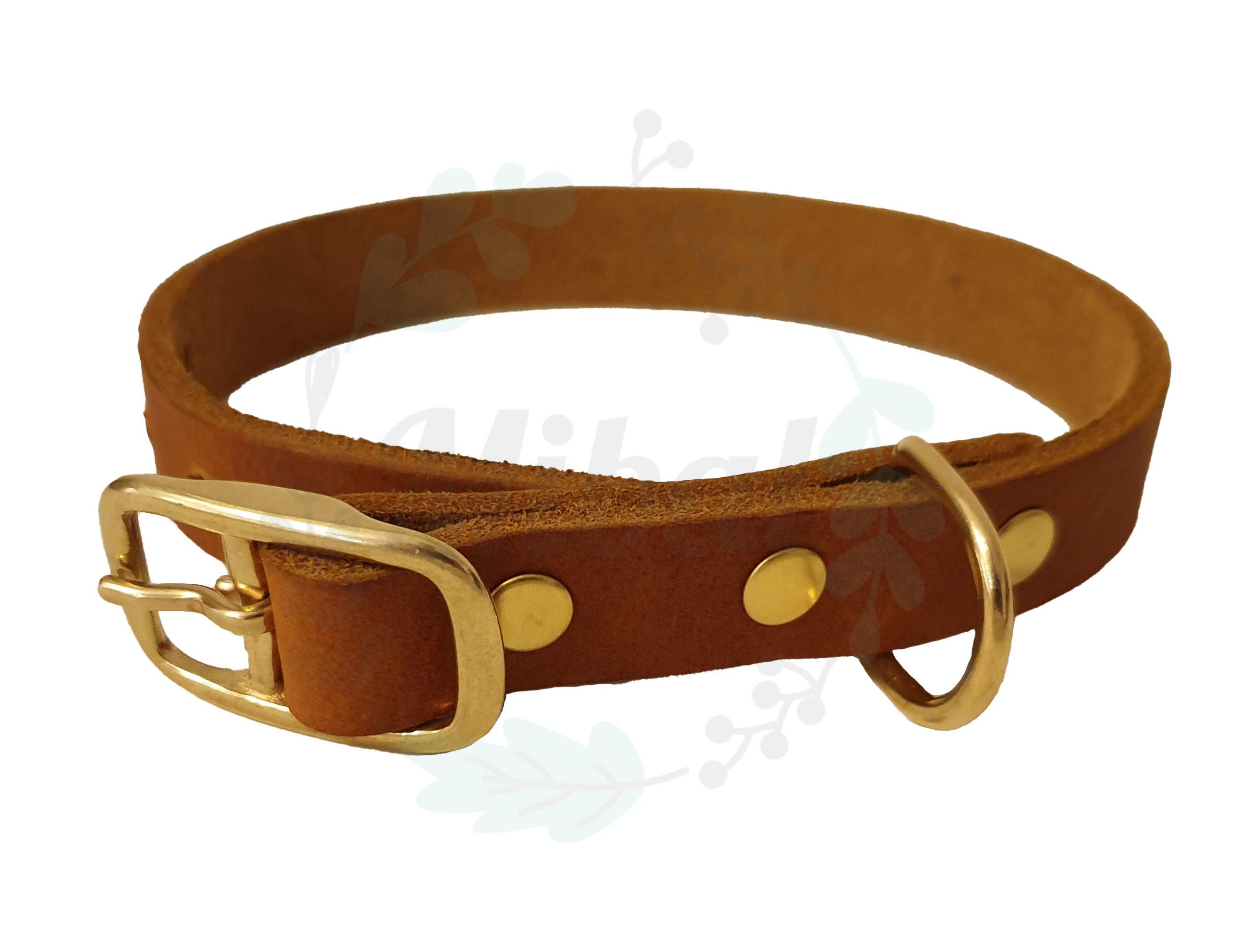Fettleder Halsband mit Metallschnalle